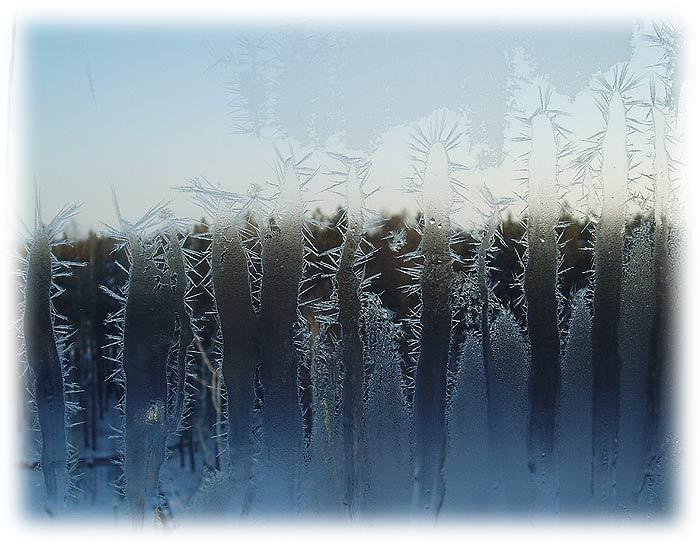 Весенние узоры на окне