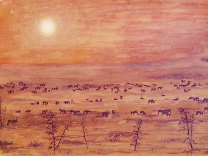 Мой старый рисунок - тундра